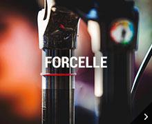 Forcelle RockShox