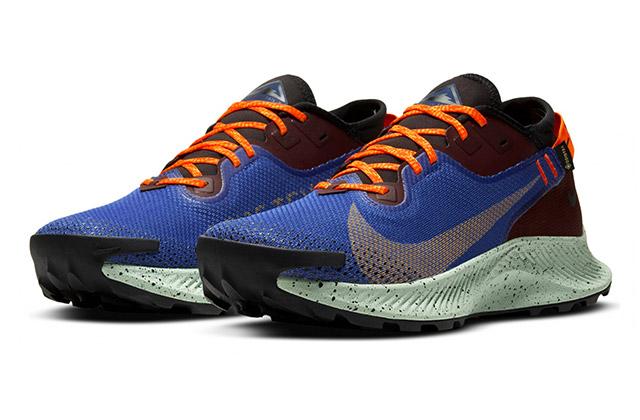 Nike Pegasus 2 Trail GTX